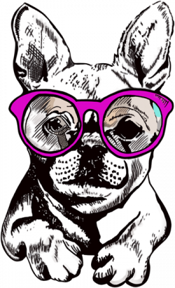 bulldog-350